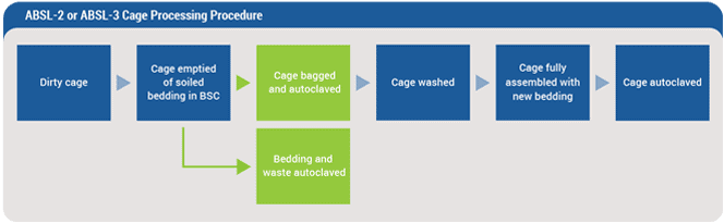ABSL-2 or ABSL-3 Cage Processing Procedure